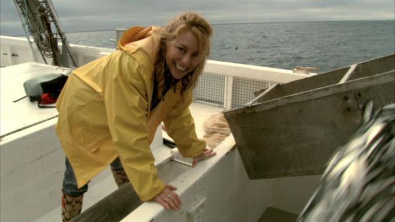 """Herring, Sardines, Fishing, """"Purse and Seine"""", Atlantic Canada Fishing"""