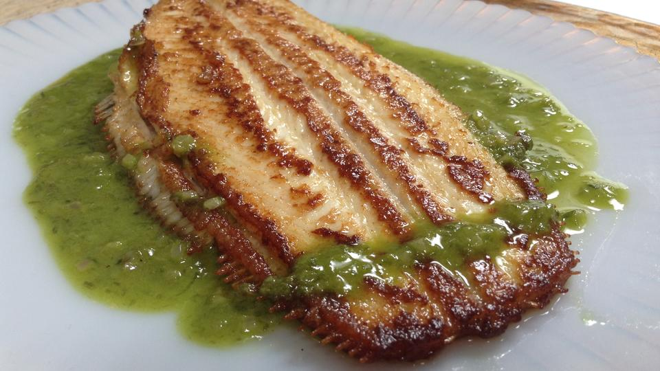 Dover Sole with Key Lime, Parsley, Chive Sauce
